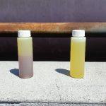 filtration echantillons